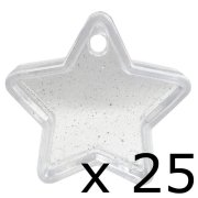 40g Clear Star Weights (25)