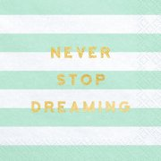 Never Stop Dreaming Mint Striped Paper Napkins (20)