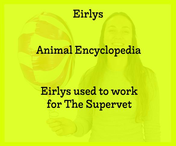 Eirlys Text